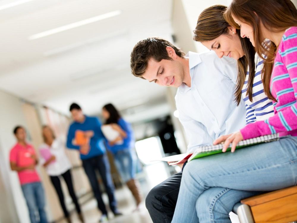 Los estudios universitarios y el acceso al empleo en España ...